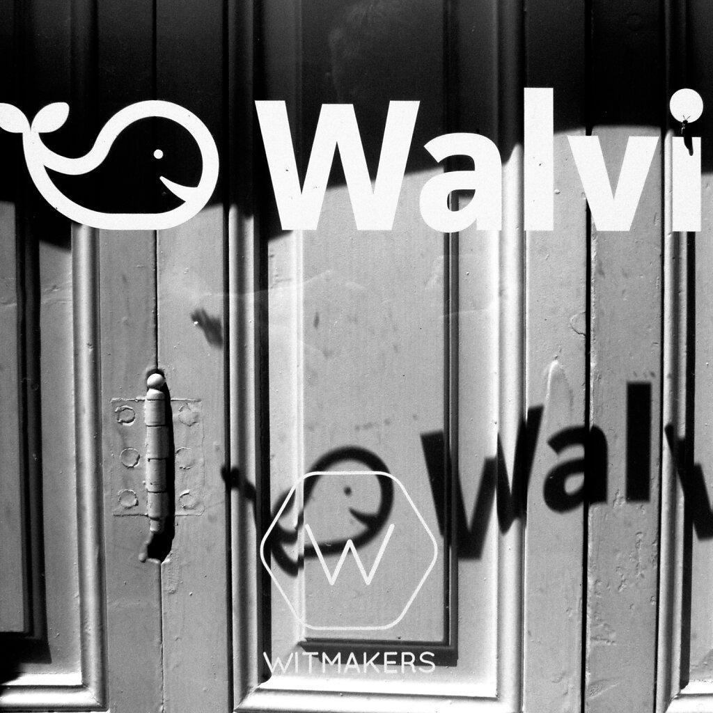 Walvi